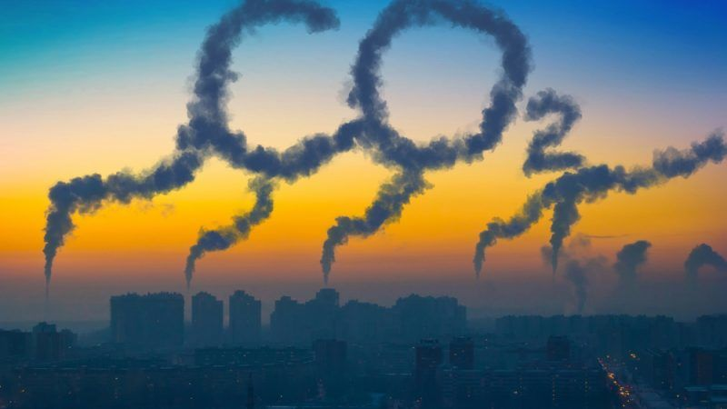 CO2 im Spiegel: Über eine unbrauchbare Studie, die nur mit viel Merlot zu ertragen ist