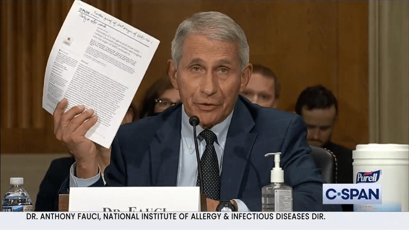 Anhörung von Dr. Fauci im US-Senat und was der Spiegel daraus macht